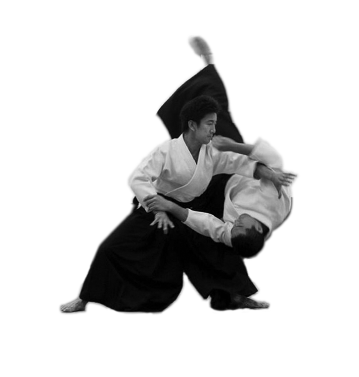 Aikido Images home